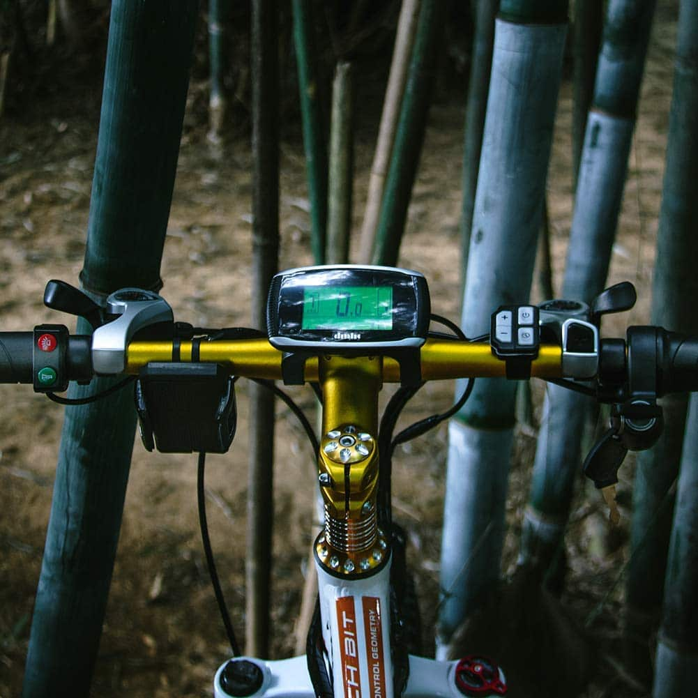 BIT_RICH_FAT_BIKE ecran LCD